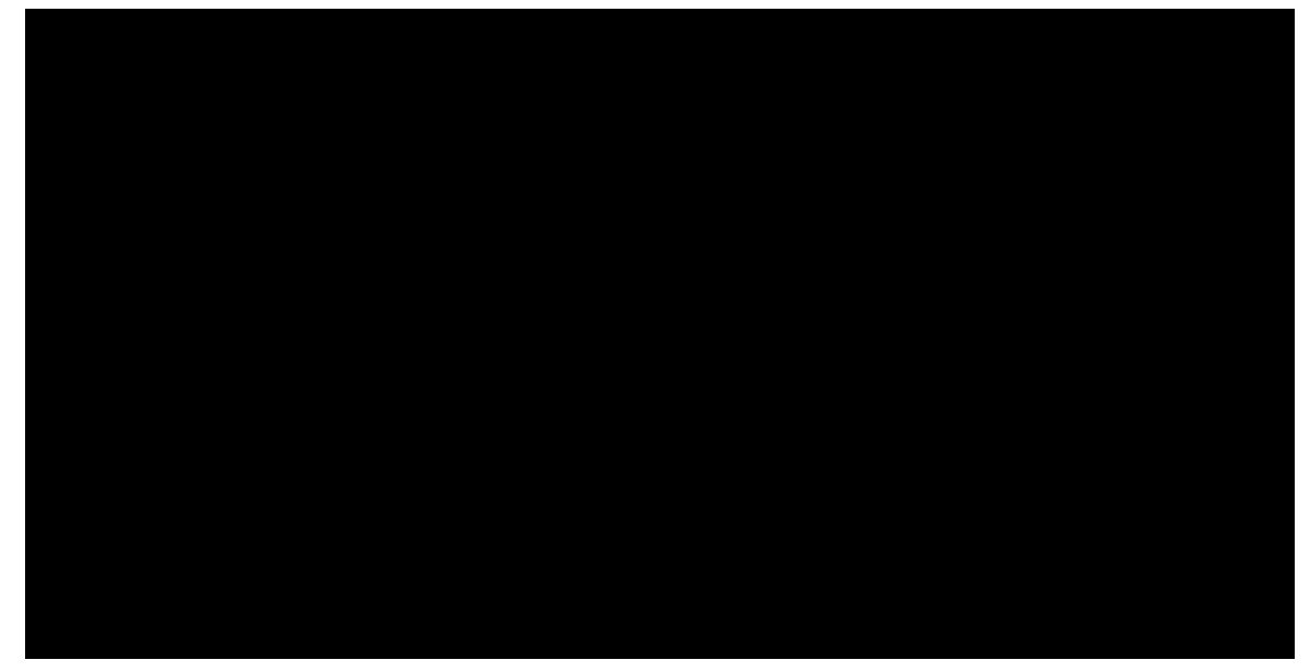 CCCH-Logo