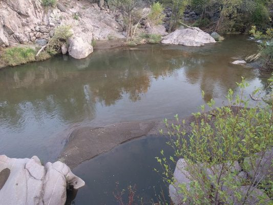 photo courtesy of the Coconino National Forest