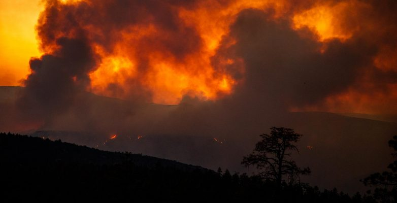 Pic from the U.S. Forest Service - Backbone Fire
