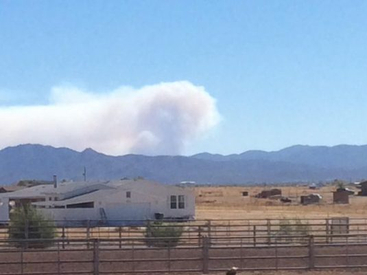 Thanks to KAFF Newsie Rich Browne for the picture of the Horse Fire.
