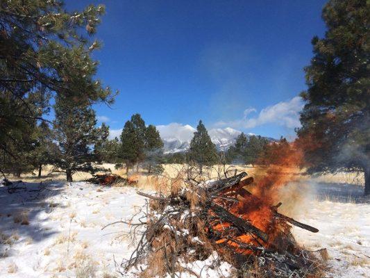 Pile Burns Snow