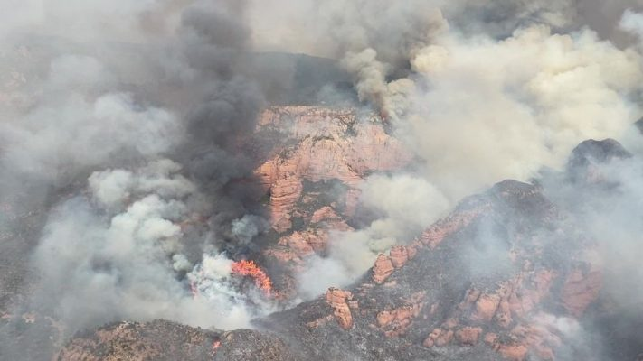 photo from the U.S. Forest Service